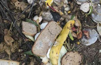 Can You Compost Bread? Here's What To Do!