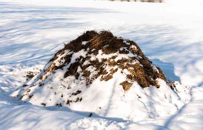 can you compost in the winter