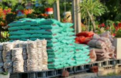 Which Is Better? Compost vs Manure vs Fertilizer