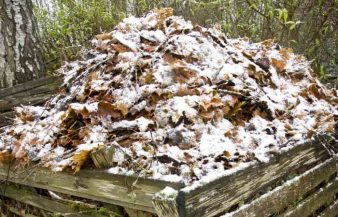 Can You Compost In The Winter? Cold Weather Tips