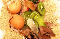 Bokashi Composting: Bucket Method Composter Guide