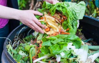 Types Of Composting – Methods For Home Gardens