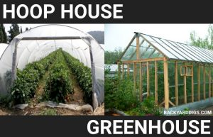 hoop house vs greenhouse