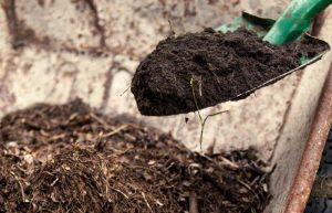 topsoil vs compost