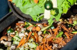 How To Use A Compost Tumbler – 6 Steps