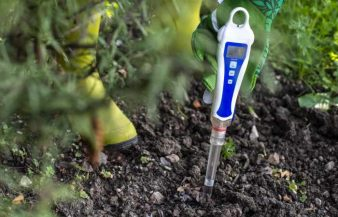 How To Make Soil Acidic – Steps To Lower pH