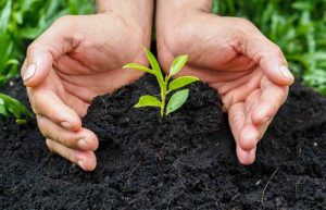how to use compost