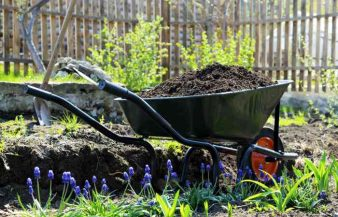 Composting 101 – How To Make Compost At Home