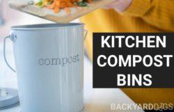 Best Kitchen Compost Bins In 2021