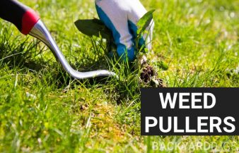 Best Weed Puller Removal Tools To Buy In 2020