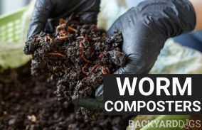 6 Best Worm Composter Bins And Worm Farm Kits
