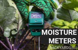 Best Soil Moisture Meters To Buy In 2021
