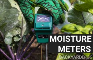 best moisture meter for plants