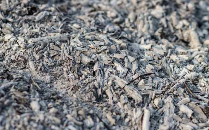charcoal ash for compost