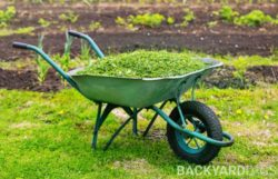How To Compost Grass Clippings Fast