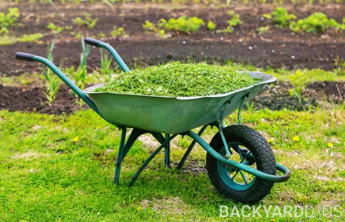 composting grass clippings