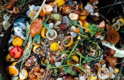 Does Compost Smell – How To Prevent It