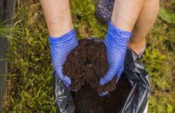 How To Store Potting Soil All Year Around