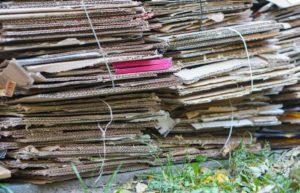 using cardboard as weed barrier