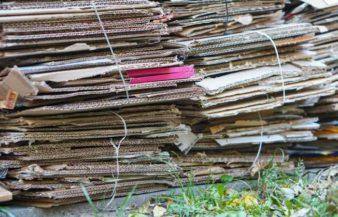 Using Cardboard As A Weed Barrier