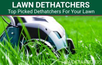 Best Lawn Dethatchers To Buy In 2021
