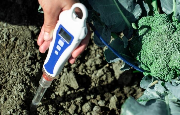best ph meters