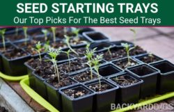 5 Best Seed Starting Trays To Buy In 2021