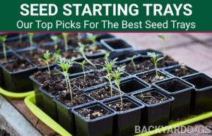 best seed starting trays