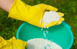 How To Dispose Of Fertilizer Step-By-Step