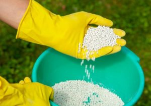 how to dispose of old fertilizer
