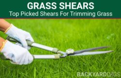 5 Best Grass Shears For Cutting Your Lawn