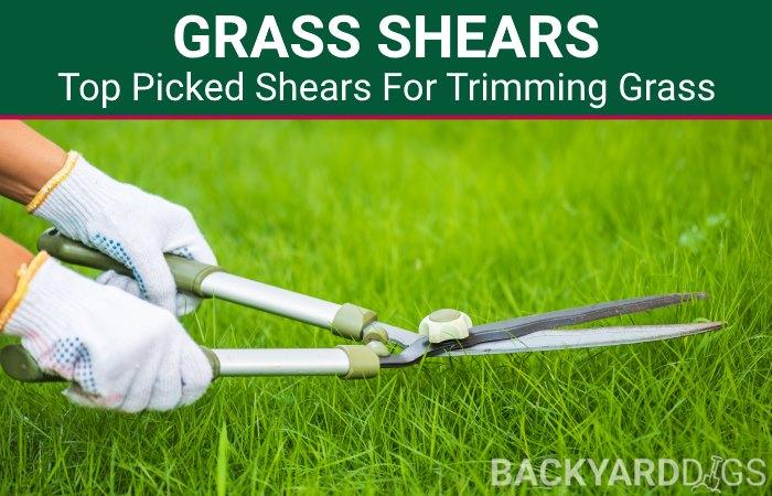 best grass shears