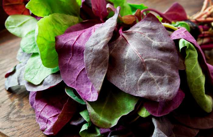 purple spinach leaves