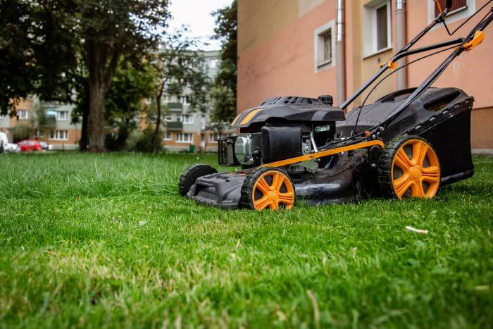 how to make grass green fast step 3 mow correctly