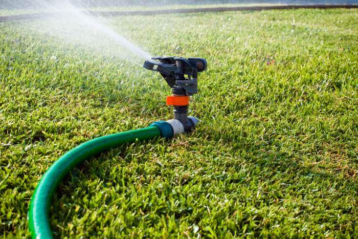 how to make grass green fast step 5 water